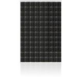 BlackStar 300 Series Monocrystalline PV Module